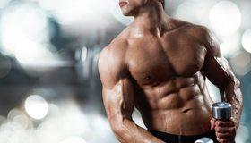 Картинка: Мужчина, гантели, спорт, пресс, сила, торс