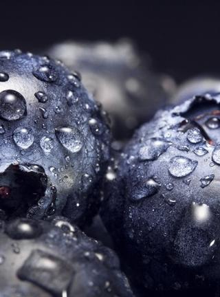 Картинка: Ягоды, черника, макро, капли, вода